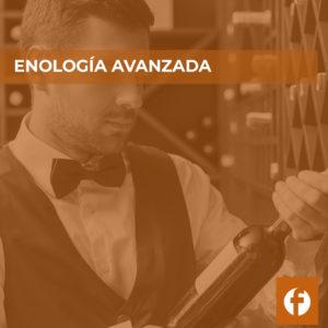 curso ENOLOGÍA AVANZADA