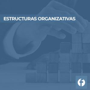 CURSO ESTRUCTURAS ORGANIZATIVAS