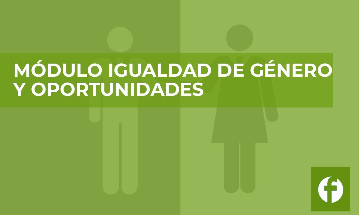 curso MODULO IGUALDAD DE GENERO Y OPORTUNIDADES