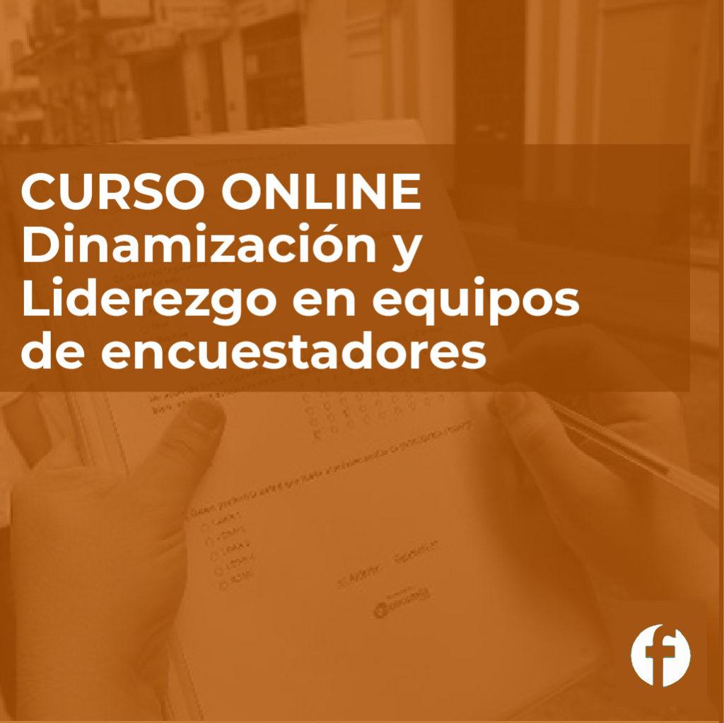 Curso online dinamización y liderazgo